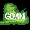 Gemini Accident Repair